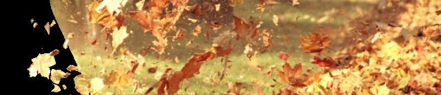 Części i akcesoria do dmuchawy do liści